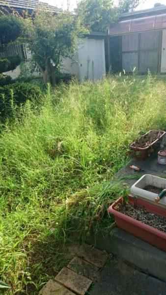 雑草に終止符を!!人工芝DIY